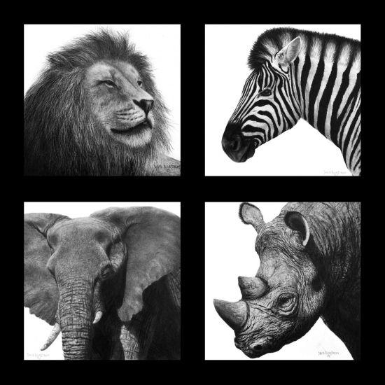 Arts For Animals