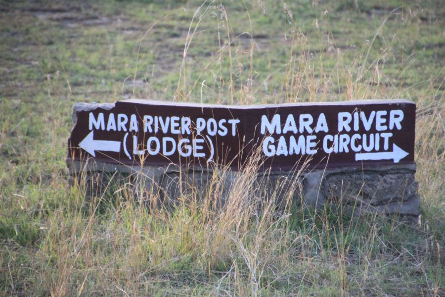 We stayed at Chaka ,a mobile camp,near one of the 10 major fords the animals use to cross the Mara River