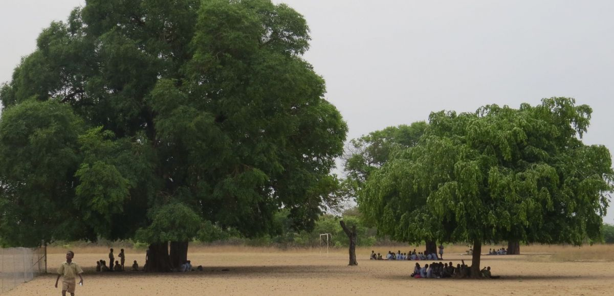 When we first started working with Jubalani school, classes were held under trees. Now we have several new metal buildings for classrooms and art center.