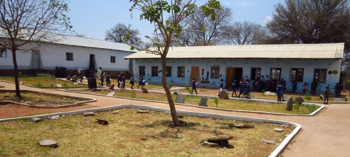 Dotomo School has about 500 children for school  lessons as well as conservation and agriculture